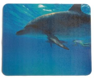 Mouse mat - Dolphin Picture - Free Postage